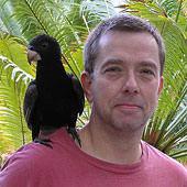 mario-ludwig-schwarzer-papagei